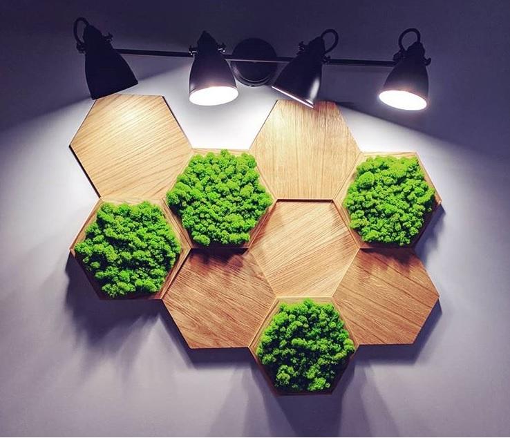 Panele z mchu w kształcie heksagonu | myMODULO.pl